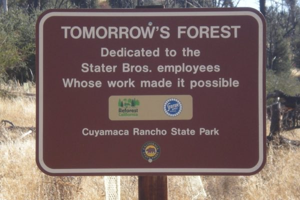 Stater-Bros-Sign-Forest-Sign-at-Cuyamaca
