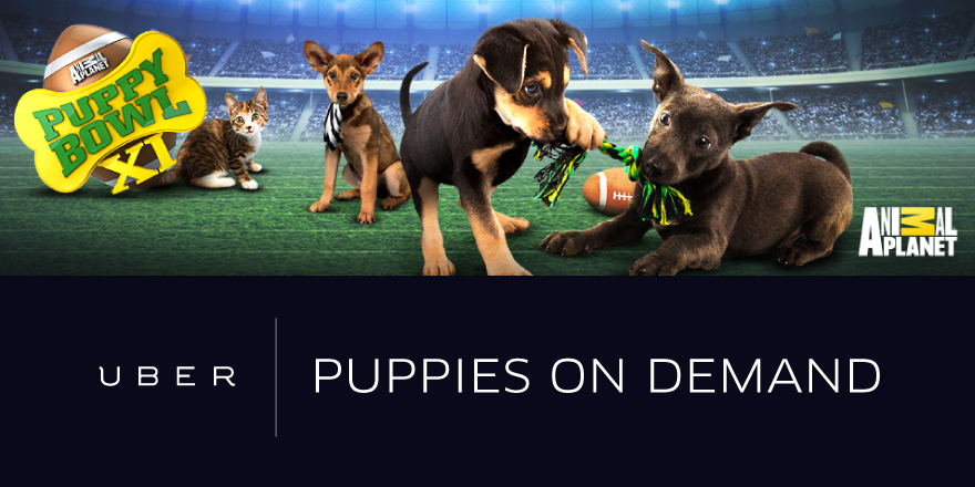 uber_US_On-DemandPuppies_social_880x440_r1