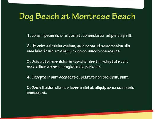 Petco-Montrose-1